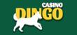 Dingo online casino